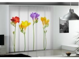 panel-5-digital-print-zavjese