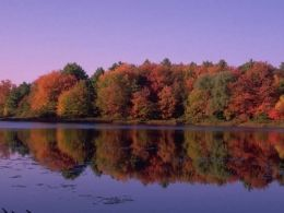 Jesen je stigla, sa sobom donoseći tople boje lišća i slikovite krajolike.